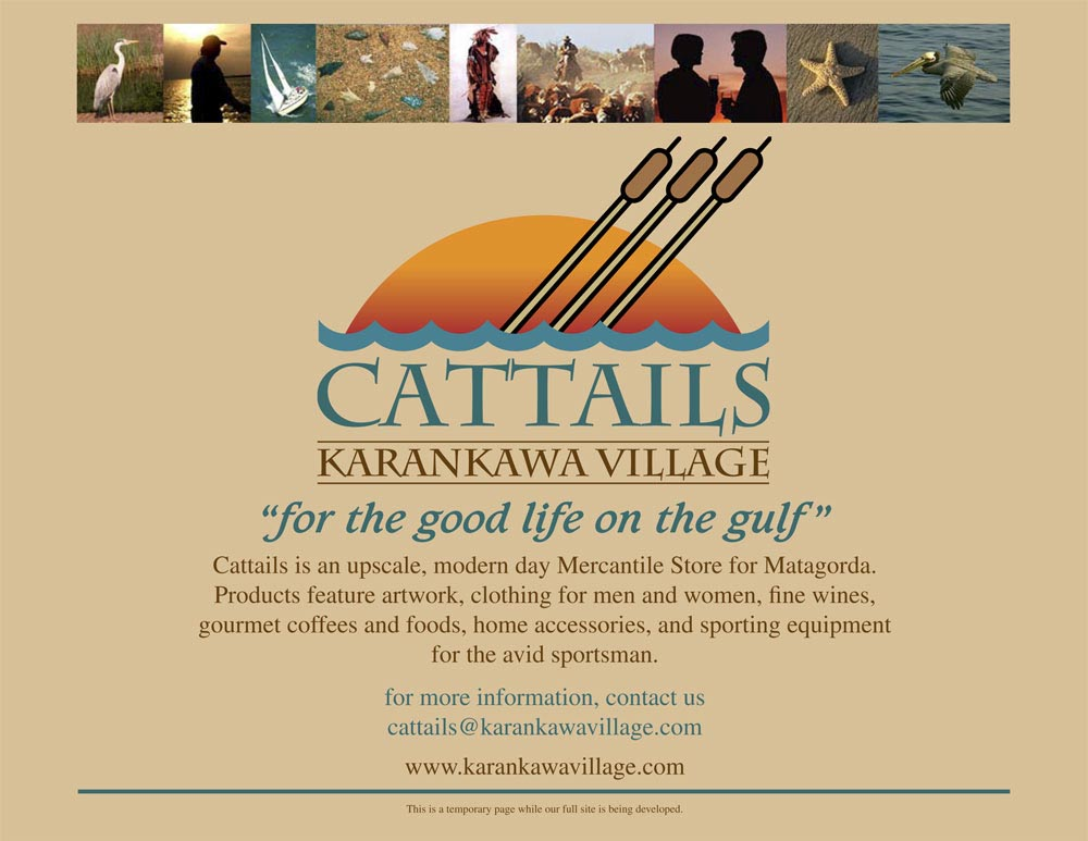 Cattails-WebSite